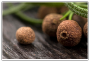 Allspice Essential Oil, (Pimenta Berry)