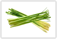 Lemongrass Essential Oil, Hydrodiffused