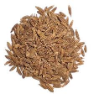 Cumin Essential Oil